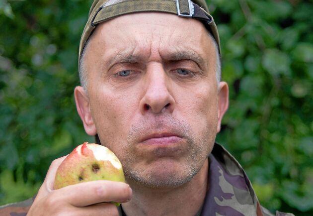 Årets äppelsmak är inte som den brukar.