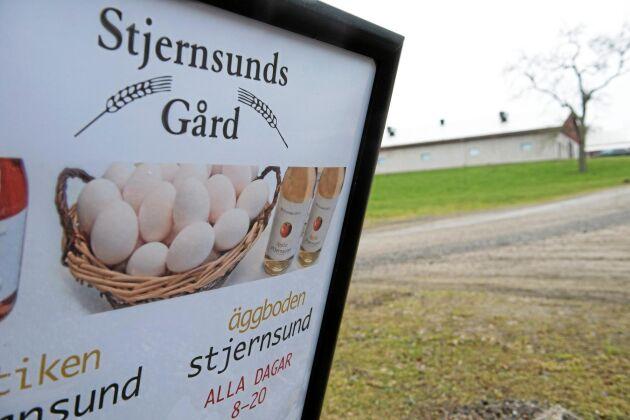 Stjernsunds gård har 126 000 värphöns som alla vistas i frigående stallar. De 18 000 ekologiska hönsen går ute under delar av året. Minst 98 procent av gårdens ägg säljs genom Kronägg. Två procent får säljas direkt i äggboden.