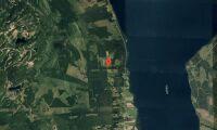 Ny ägare till skogsfastighet i Jämtland i augusti
