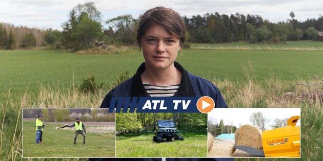 ATL TV: Här gasas lagrad spannmål