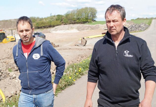 Magnus Karlsson (till höger) på Carlsro gård, Varberg, har fått nej till att använda sand i liggbåsen. Han backas upp av kollegan Lars Svensson.