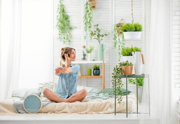 Gör sovrummet extra vilsamt med många växter.