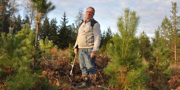 Han viltbehandlar för att rädda sin ungskog