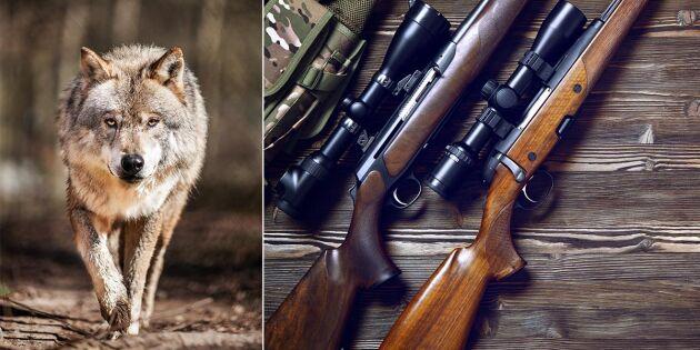 Brottsmisstänkte företagsledaren kräver att vapenbeslag hävs