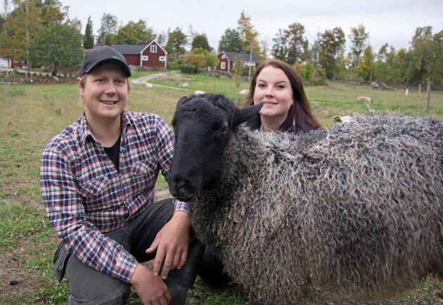 Varken Robin Andersson eller Pernilla Olsson är uppvuxna på lantbruk. Men de hoppas ändå kunna etablera sig som köttbönder på landsbygden.