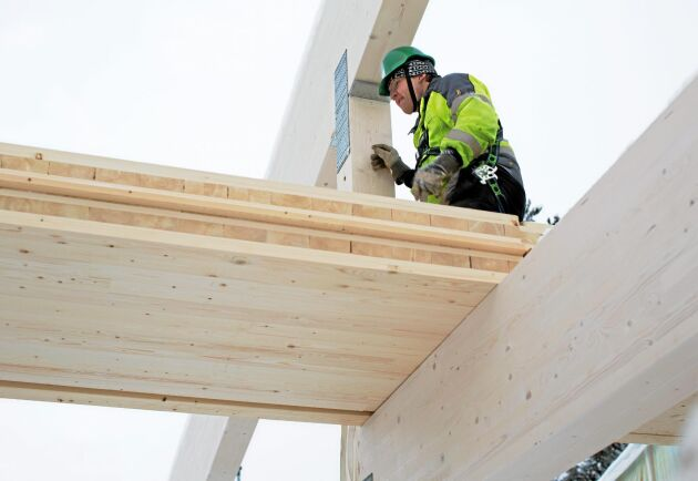 Montering av bjälklag i korslimmat trä på nya ishallen vid Skellefteå Kraft Arena.