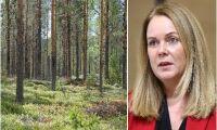Skogspolitiken är och ska förbli nationell