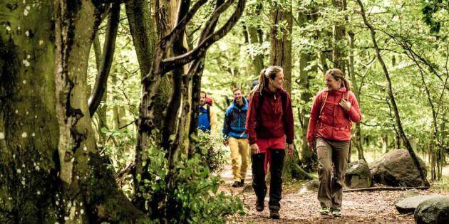 Europas största vandringsfest kommer till Sverige – häng med!