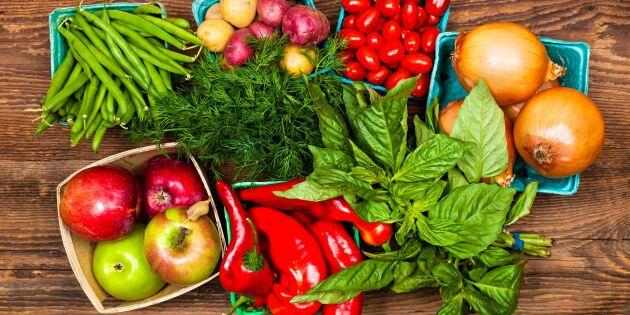 Livsmedelsforskningen riskerar att dö sotdöden