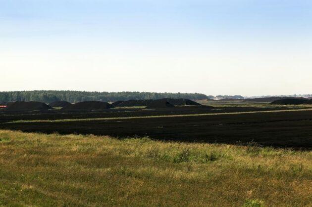 Nästan en tredjedel av allt markbundet kol finns i torvjordar.