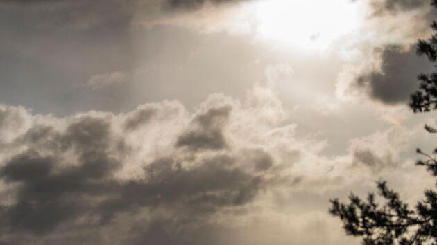 SMHI ser ett ihållande regnväder komma in över Sverige till helgen.