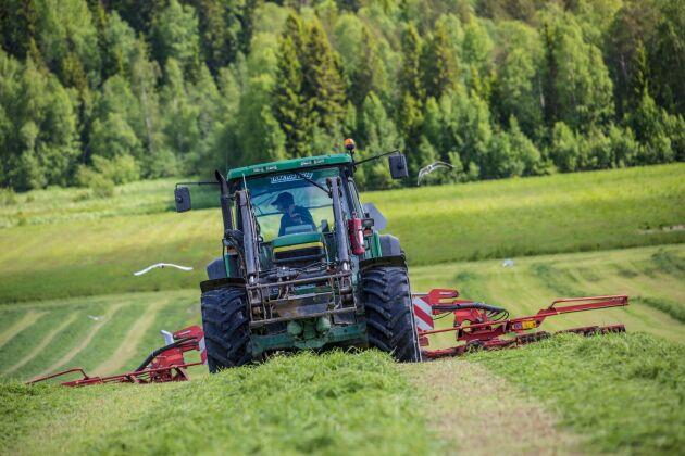 För att öka möjligheterna till en tredje vallskörd kan lantbrukare i Laholm få möjlighet att ansöka om dispens för att gödsla till och med den 31 december.
