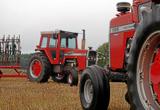 MF 1135 och MF 1155 är två klassiker bland stordragarna från 1970-talet. Så även i Sverige.