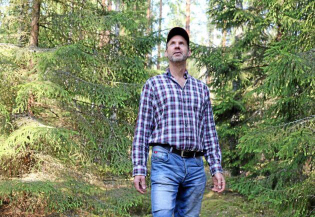 Dan Johansson har skrivit en handbok om kvalitetsskogsbruk.