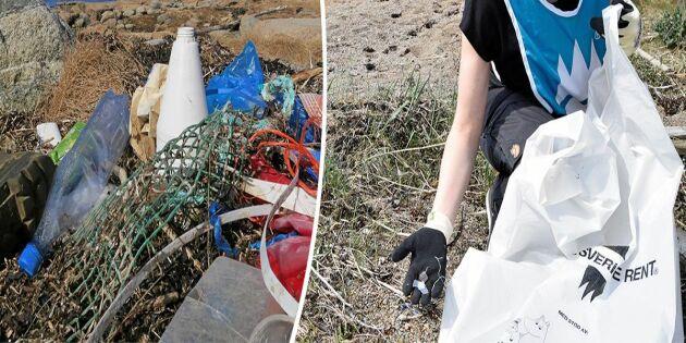 Krafttag mot plasten i havet – så kan du hjälpa till!
