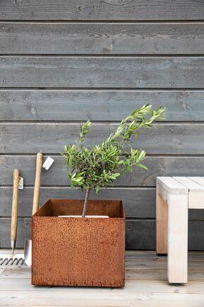 Järnvitriol gör trä grått men ger inget skydd. En tjärfärg med grått pigment ger skydd och nästan samma utseende, Här har väggen målats med Ausons Tjärvitriol. Foto: Auson