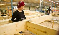 Minskat byggande slår mot träföretagen