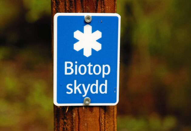 Mark- och miljööverdomstolen har slagit fast att ortsprismetoden alltid ska användas vid biotopskydd, även i mindre områden.