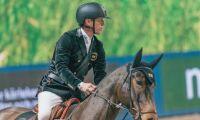 EHV-1 kan ha spridits från norska hästar