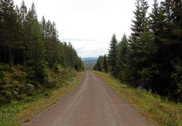 Målen om ersättning för nekade avverkningstillstånd i fjällnära skog har ännu inte nått vägs ände. Nu prövas fem fall i Mark- och miljööverdomstolen.