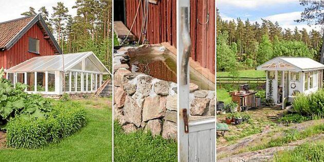 Vacker inspiration: Paret Hed har triss i växthus på tomten