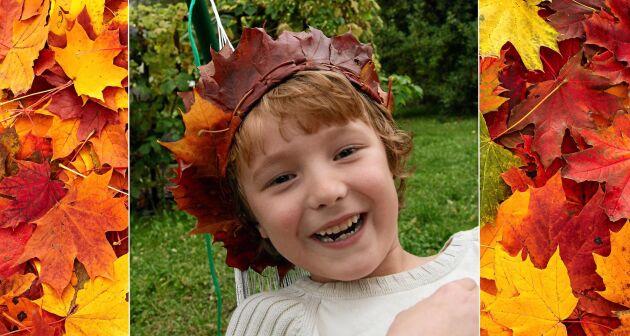Höstens roligaste utepyssel är att vika sig en krona av lönnlöv.