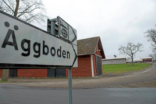 Stjernsunds gård ligger längs en hårt trafikerad väg och har sin gårdsbutik intill hönsstallarna. Så ska det vara. Öppenhet är viktig, tycker ägarna.