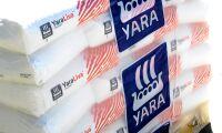 Mutdom mot Yara-direktör står fast