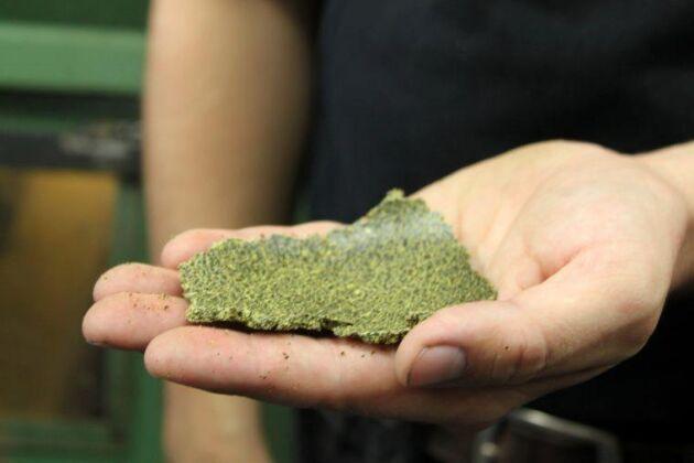 Pressrester från raps, säljs som foder idag. Kan bli vegansk skyr i framtiden. Utvecklas av Lunds universitet, Swepharm och Gunnarshögs jordbruk.