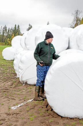 """""""Det blir mycket extrajobb om man ska täcka 600 balar med presenning och det skulle bli ett dyrt staket. Länsstyrelsen lägger över ansvaret på oss djur- och markägare. Det enda man kan göra är att skjuta betydligt fler djur. Förra året fick jaktområdet tilldelat en hind och en kalv. Det gör ingen större skillnad"""", säger Anna Karin Sundberg i Sunnansjö."""