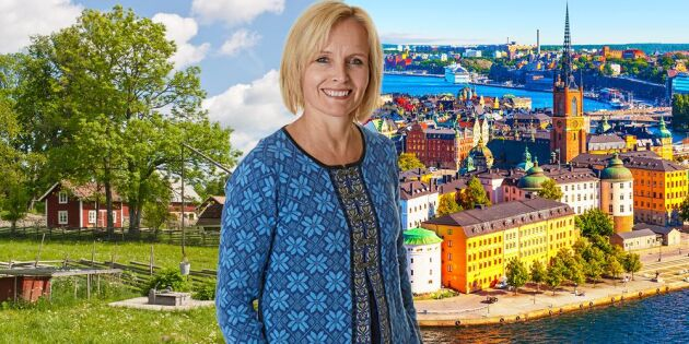 """Ackermann: """"De stora partierna har inte tagit ansvar för det kluvna Sverige"""""""