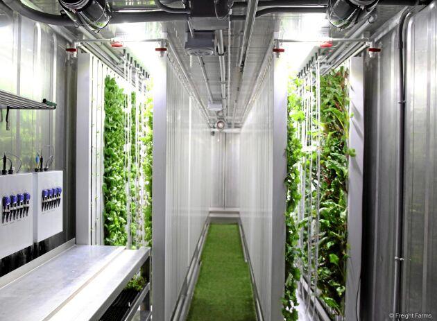 Amerikanska Freight Farms levererar fraktcontainrar till många inomhusodlingsprojekt. Enligt bolaget är den årliga energiförbrukningen upp till 36000 kilowattimmar.