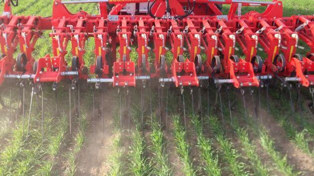 Målet är att radhackan ska halvera mängden växtskyddsmedel i den konventionella odlingen.