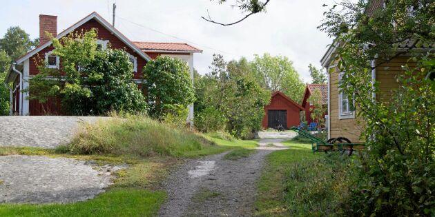 Unikt tillfälle: Idylliska skärgårdsön söker bonde på heltid