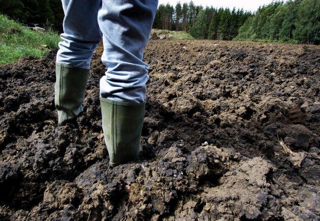 I avloppsslam finns en gigantisk blandning av kemikalier som kan bidra till att förorena marken, skriver Torsten Torstensson i en debattreplik.