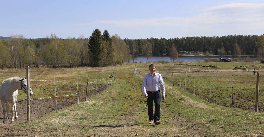 Tidigt på morgnarna kan Anders ses vandra kring hästhagen.