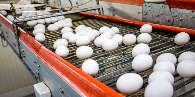 Oro för prispress på ägg efter storaffär