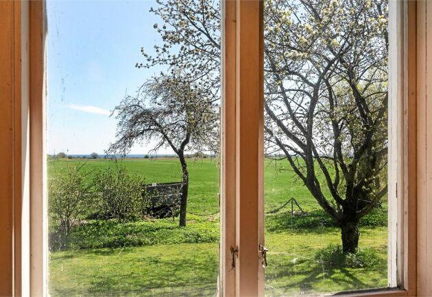 Genom fönstret blickar du ut över ängsmark och Östersjön.
