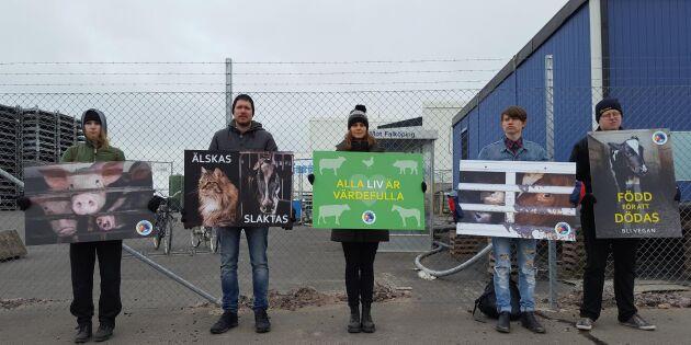 Aktivister demonstrerar i Skövde