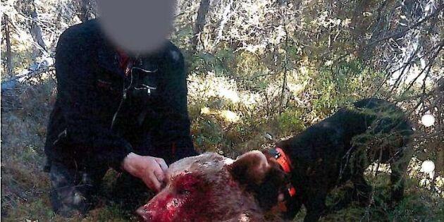 Straff sänktes i jaktbrottshärvan