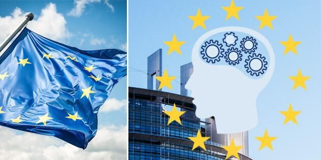 Grafik: Så väljer du din EU-parlamentariker
