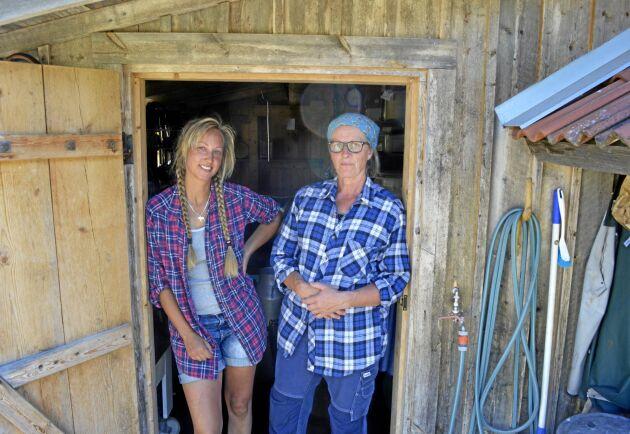 Tin Gumuns på Karl Tövåsen och Kristina Åkermo på Oviken Ost har inlett ett samarbete för att tillverka gourmetostar på fäboden.