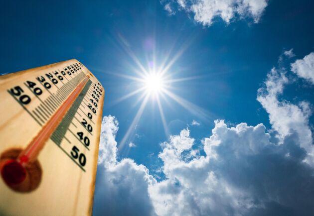 Värmen gladde många i helgen.