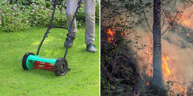 Svensk studie: Gräsmattan kan skydda huset vid skogsbrand