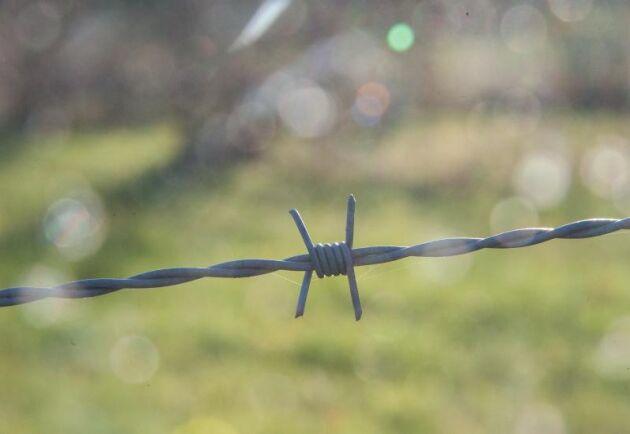 Att ha taggtråd i stängslet till hästhagen kostar paret 26500 kronor i böter.
