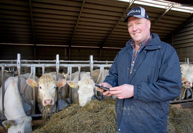 Charolais-uppfödaren Sven-Olof Hägg är nöjd med systemet CowManager som håller koll på kornas brunst och skickar ett larm till mobilen när det är dags för seminering.