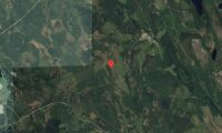 Ny ägare till skogsfastighet i Norrbotten i november