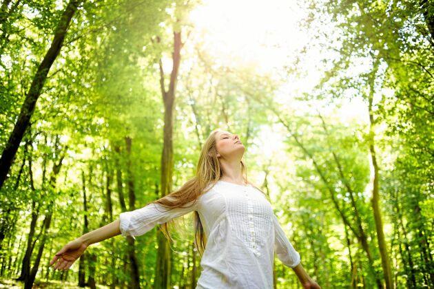 Var ute i skogen och andas på rätt sätt – två viktiga tips för en bättre hälsa.