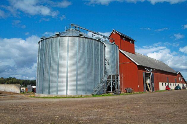 Kullingsjö Lantbruk AB i Vårgårda är en av de mjölkgårdar som ingår i ett SLU-projekt för ökad andel egenproducerat proteinfoder.
