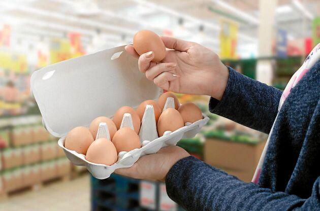 Ägg - det bästa av det bästa.